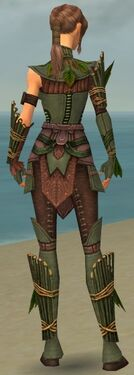 Ranger Druid Armor F gray back
