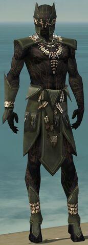 File:Ritualist Kurzick Armor M gray front.jpg