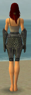 Warrior Elite Platemail Armor F gray arms legs back