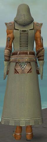 File:Dervish Istani Armor M gray back.jpg