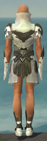 File:Paragon Elonian Armor M gray back.jpg
