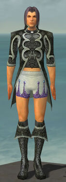 Elementalist Elite Canthan Armor M gray chest feet front