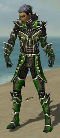 File:Necromancer Elite Kurzick Armor M dyed front.jpg