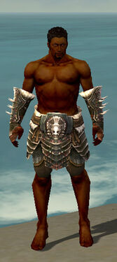 Warrior Norn Armor M gray arms legs front