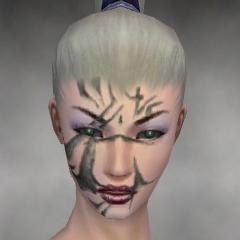 File:Necromancer Elite Kurzick Armor F gray head front.jpg