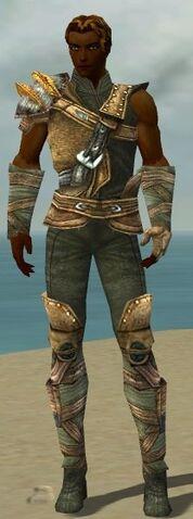 File:Ranger Tyrian Armor M gray front.jpg