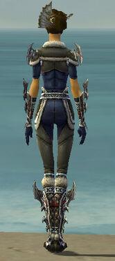 Assassin Norn Armor F gray back