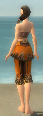 File:Aureate Pants F dyed back.jpg