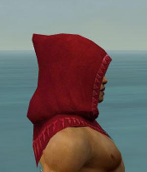 File:Dervish Sunspear Armor M dyed head side.jpg