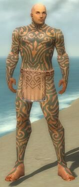 Monk Flowing Armor M gray front