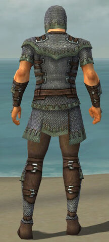 File:Warrior Tyrian Armor M gray back.jpg