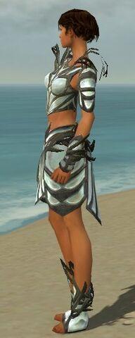 File:Paragon Primeval Armor F gray side.jpg