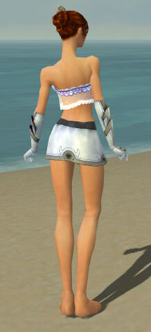 File:Elementalist Ascalon Armor F gray arms legs back.jpg