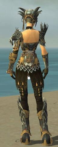 File:Warrior Silver Eagle Armor F dyed back.jpg