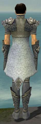 File:Elementalist Stoneforged Armor M gray back.jpg