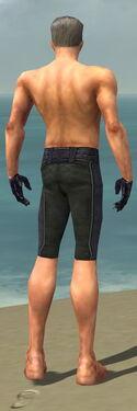 Mesmer Elite Elegant Armor M gray arms legs back
