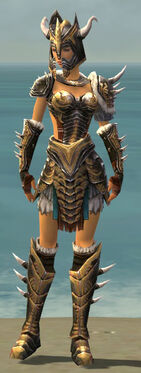 Warrior Norn Armor F dyed front