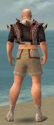 File:Monk Primeval Armor M gray chest feet back.jpg