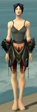 Necromancer Sunspear Armor F gray arms legs front