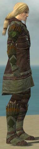 File:Ranger Elite Druid Armor M gray side.jpg