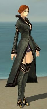 Mesmer Norn Armor F gray chest feet front