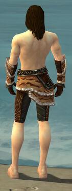 Ranger Vabbian Armor M gray arms legs back
