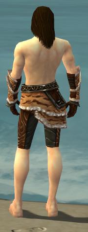 File:Ranger Vabbian Armor M gray arms legs back.jpg