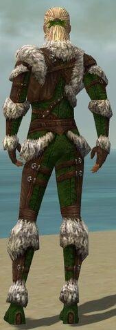 File:Ranger Elite Fur-Lined Armor M dyed back.jpg