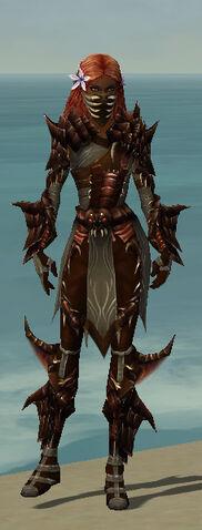 File:Ranger Primeval Armor F gray front.jpg