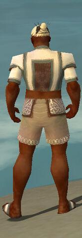 File:Monk Sacred Armor M gray chest feet back.jpg