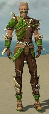 Ranger Asuran Armor M dyed front