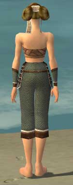 File:Monk Elite Judge Armor F gray arms legs back.jpg