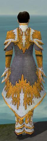 File:Elementalist Iceforged Armor M dyed back.jpg