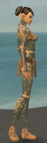 File:Monk Star Armor F gray side.jpg