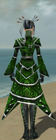File:Necromancer Fanatic Armor F dyed back.jpg