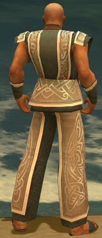 File:Monk Tyrian Armor M gray back.jpg