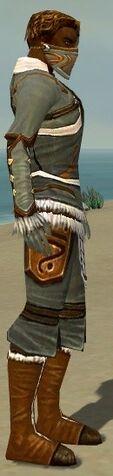 File:Ranger Canthan Armor M gray side.jpg