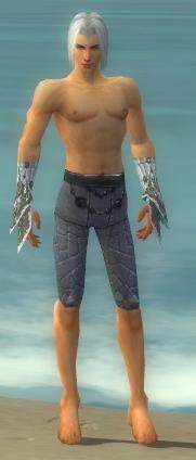 File:Elementalist Elite Iceforged Armor M gray arms legs front.jpg