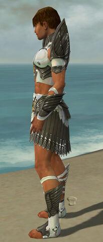 File:Paragon Elite Sunspear Armor M gray side.jpg