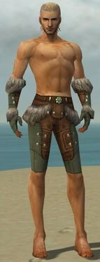 Ranger Fur-Lined Armor M gray arms legs front