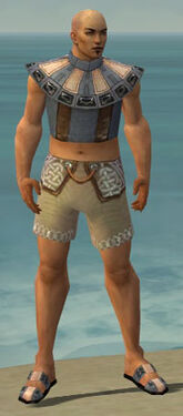Monk Obsidian Armor M gray chest feet front