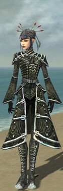 Necromancer Fanatic Armor F gray front