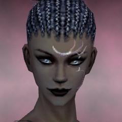 File:Necromancer Vabbian Armor F dyed head front.jpg
