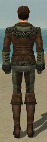 File:Mesmer Istani Armor M gray back.jpg