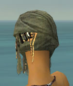 File:Ritualist Ancient Armor F gray head back.jpg