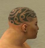 File:Monk Elite Kurzick Armor M gray head side.jpg