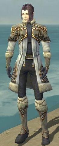 File:Elementalist Norn Armor M gray front.jpg