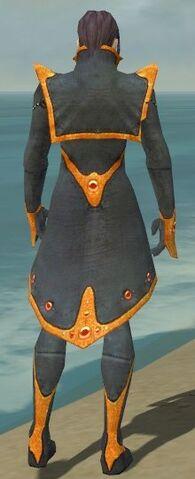 File:Elementalist Tyrian Armor M dyed back.jpg