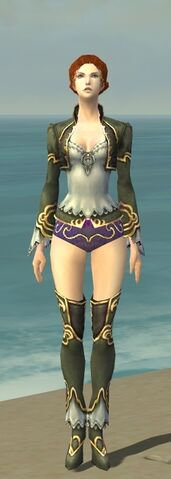 File:Mesmer Monument Armor F gray chest feet front.jpg