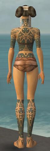 File:Monk Star Armor F gray chest feet back.jpg